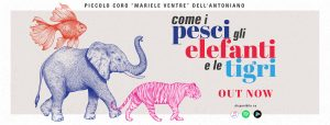 2019 Canzoni Pesci Elefanti Tigri